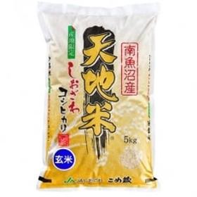 【30年産】南魚沼産しおざわコシヒカリ『天地米』玄米5kg