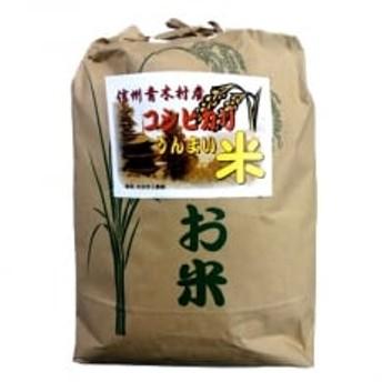 【令和元年産】青木村産お米コシヒカリ(白米)10kg