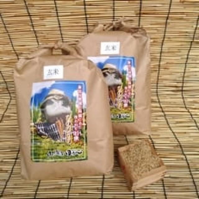 「平成30年産」長崎ヒノヒカリ 玄米8.4kg(4.2kg×2)