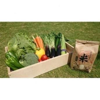 農家さんこだわりの野菜10種+特別栽培米コシヒカリ2kgD(野菜などの詰合せ)