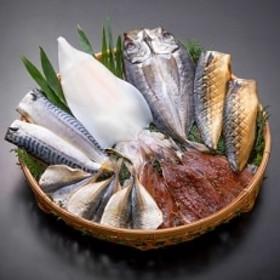 【唐津産】 イカの一夜干しも付いた大満足な干物6種