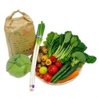 朝採り野菜詰め合わせ(約10点)とお米(10kg)セット