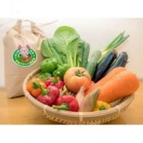 JAきみつ旬の野菜詰合せセットとコシヒカリ1kgのセット