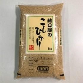 藏口屋のこしひかり5kg(玄米)