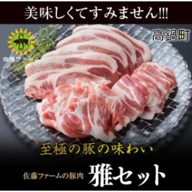 ns <高鍋町産 佐藤ファームの豚肉 雅セット合計2.1kg>1か月以内に順次出荷