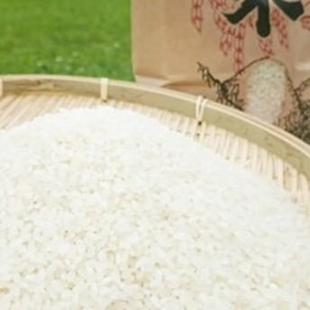 【京丹後市産】令和元年産 特別栽培米コシヒカリ3kg