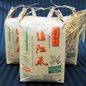 平成30年産 近江米キヌヒカリ30kg(白米10kg×3袋)