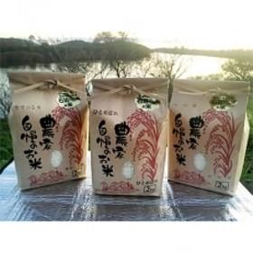 石坂さん家のお米 3種セット