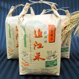平成30年産 近江米秋の詩30kg(白米10kg×3袋)