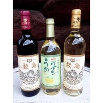 敷島醸造 敷島赤・白・甲州小梅ワイン3本セット