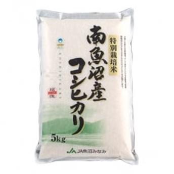 【令和1年産】選ばれた匠がつくる「特別栽培米南魚沼産こしひかり8割減10kg」(精米)
