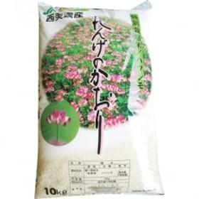 特別栽培米ハツシモ れんげのかおり・10kg