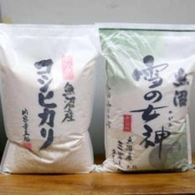 【先行受付】雪室貯蔵魚沼産コシヒカリ&魚沼産ミルキークイーン2品種食べ比べ10kg(各5kg×2)