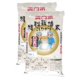 黄門米特別栽培米コシヒカリ白米5kg×2袋