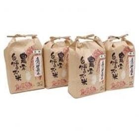 【地元ブランド】庄内神蔵米(精米)2kg×4個セット