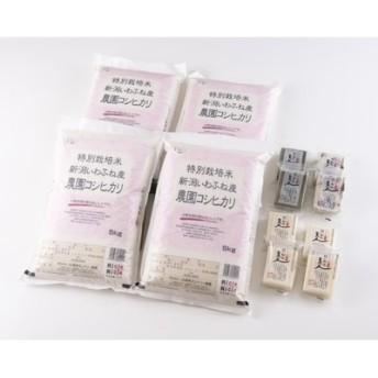 平成30年産 特別栽培米岩船産コシヒカリ20kg・杵つき餅セットD110