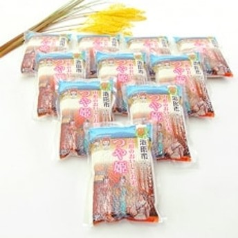 【平成30年産】山形県庄内産「つや姫」真空米300g(2合)×10袋セット