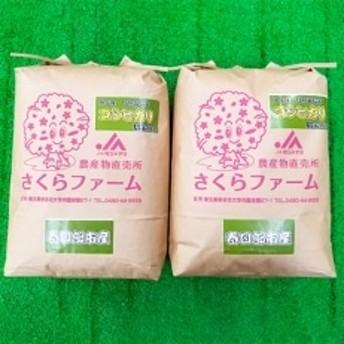 平成30年産 春日部市産 特別栽培米コシヒカリ精米10kg(5kg×2袋)