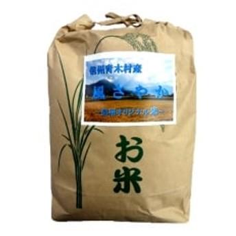 【令和元年産】青木村産お米風さやか(白米)10kg