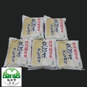 特別栽培米 魚沼産コシヒカリ 2kg×5袋