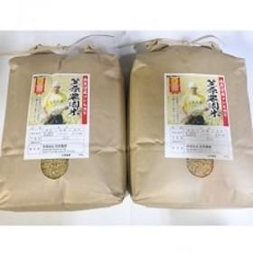 【平成30年産】南魚沼産笠原農園米コシヒカリ玄米5kg×2