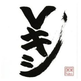 Vキシ(DVD付)/レキシ