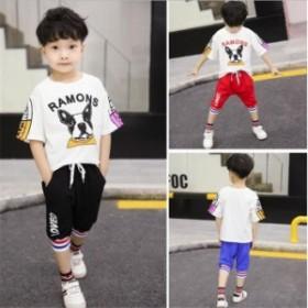 セットアップ 子供 ベビー  夏 半袖  Tシャツ  上下セット スポーツウェア 運動  ショートパンツ ハーフパンツ カジュア