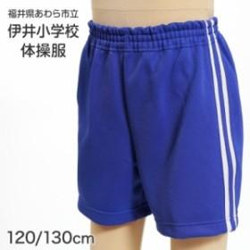 ギャレックス あわら市立伊井小学校 体操服 クォーターパンツ (120cm・130cm)ソーワ (取寄せ)