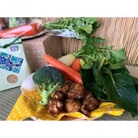 【玄米2kg】栽培期間農薬不使用『身体が喜ぶ野菜とお米』詰め合わせ(おまかせ)潮来はぐくみのもり