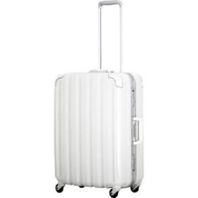 【4泊5日に最適】スーツケース(63L)