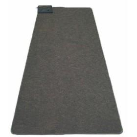 カーペット 1畳用 1畳用カーペット本体 グレー TEKNOS