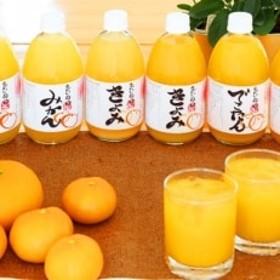 柑橘ジュース三重奏6本セット