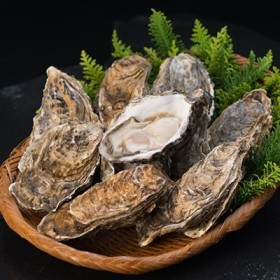 【ぷりっぷりで濃厚!】釧路管内産【活】牡蠣(中)30個(カキナイフ付き)[Ka402-B108]
