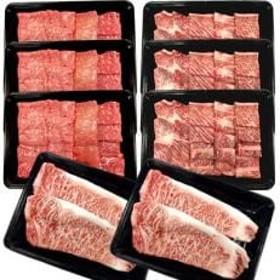 【南信州牛】焼肉&ステーキ セット(サーロインステーキ800g、モモ1200g、肩ロース1050g)