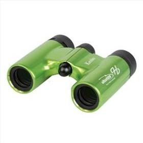 コンパクトダハ双眼鏡 ウルトラビューH 6X21DH FMC グリーン UV6X21-GR
