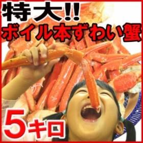 【送料無料】身入り抜群!!特大ボイルズワイ蟹足5kg/ズワイガニ/カニ/脚/訳あり【rk】