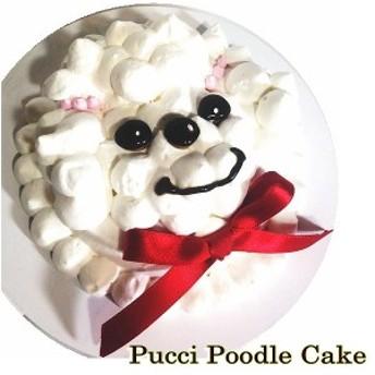 犬用 プチプードルケーキ 3号サイズ馬肉生地 誕生日 小さいケーキ 食べきりサイズ 無添加 プレゼント アレルギー 人気