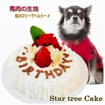 犬用 ミニケーキ スターツリー3号サイズ馬肉生地 誕生日 無添加 プレゼント アレルギー 人気 帝塚山WANBANA ワンバナ