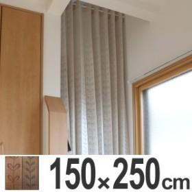間仕切り カーテン パタッとたためるカーテン 150×250cm ( 間仕切りカーテン 部屋 仕切り 省エネ 防寒 保温 保冷 目隠し 長さ調整