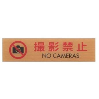 光 撮影禁止 NO CAMERAS WMS1847-9
