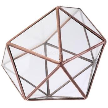 テラリウム ガラスケース ディスプレイケース 多面体 苔 多肉植物 エアープランツ 全2色3サイズ - S銅色