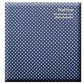 Digioデジタルフリーアルバム「プラフィーネ」(デミサイズ/ブルー) ア-DP-144-B