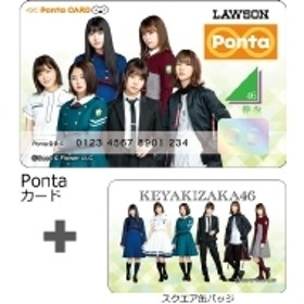 欅坂46/欅坂46(缶バッジa)×pontaカード