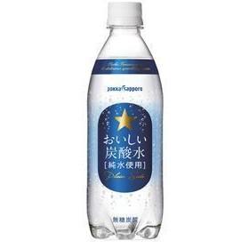 ポッカサッポロ おいしい炭酸水 500mlペットボトル×1ケース(24本)(024)