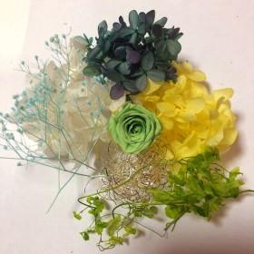 ハーバリウム花材