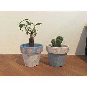 送料無料 お花と星の植木鉢セット