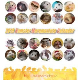 2019年ハムスター・モルモットづくし卓上カレンダー
