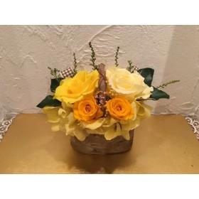 プリザーブドフラワー 白樺アレンジ オレンジイエローローズ