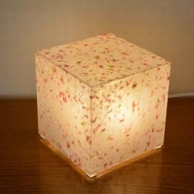 灯り箱 新桃13 LED