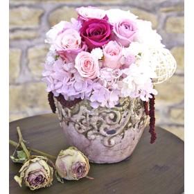 Daydream -pink-